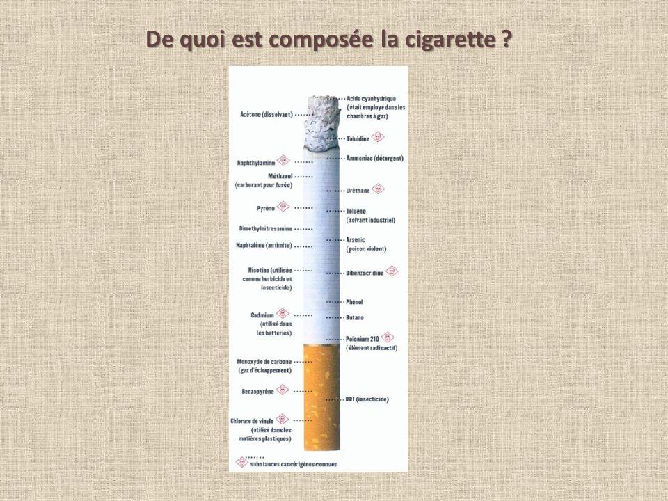 De quoi est composée la cigarette ?