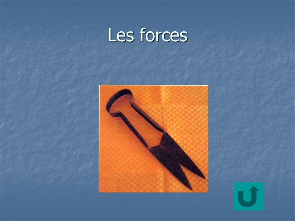 Les forces