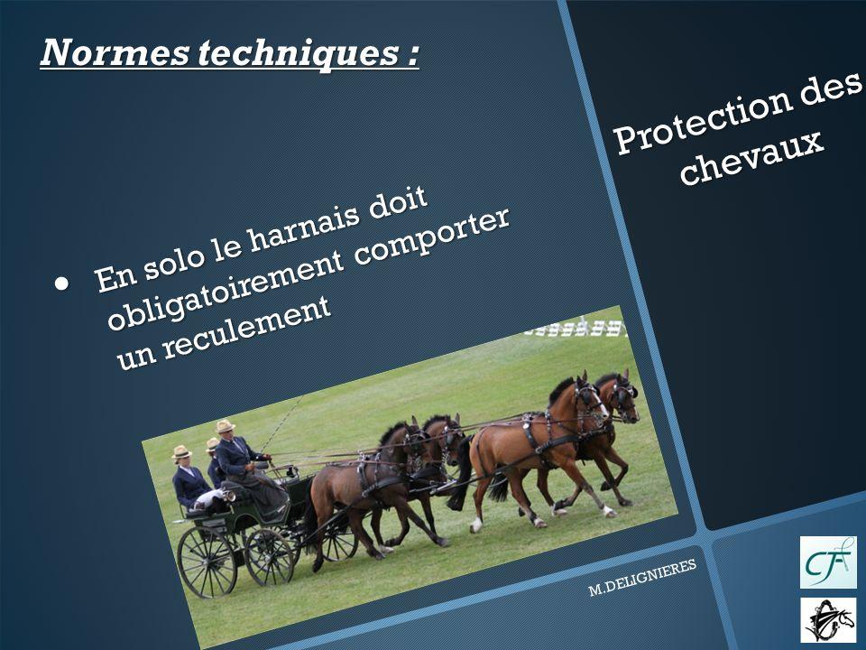 Protection des chevaux M.DELIGNIERES En solo le harnais doit obligatoirement comporter un reculement En solo le harnais doit obligatoirement comporter un reculement Normes techniques :