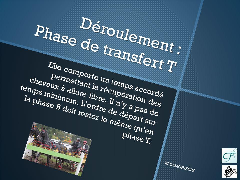 Déroulement : Phase de transfert T Elle comporte un temps accordé permettant la récupération des chevaux à allure libre.