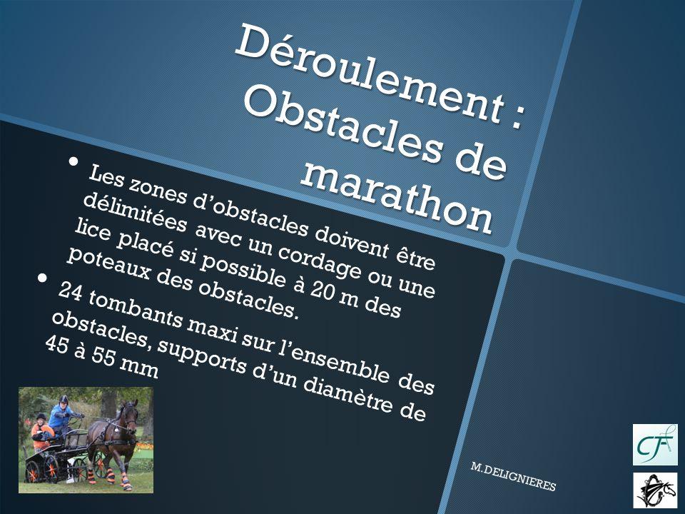 Déroulement : Obstacles de marathon Les zones dobstacles doivent être délimitées avec un cordage ou une lice placé si possible à 20 m des poteaux des obstacles.