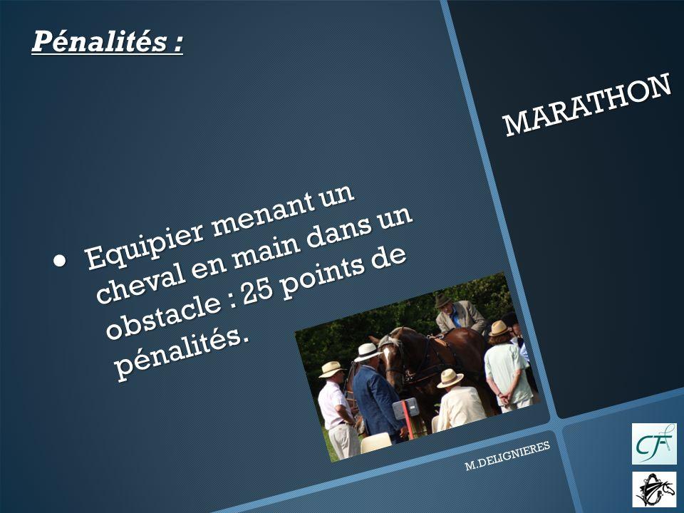 MARATHON M.DELIGNIERES Equipier menant un cheval en main dans un obstacle : 25 points de pénalités.