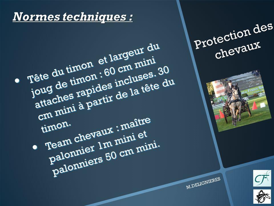 Protection des chevaux M.DELIGNIERES Tête du timon et largeur du joug de timon : 60 cm mini attaches rapides incluses.