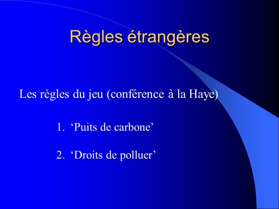 Règles étrangères Les règles du jeu (conférence à la Haye) 1.Puits de carbone 2.Droits de polluer
