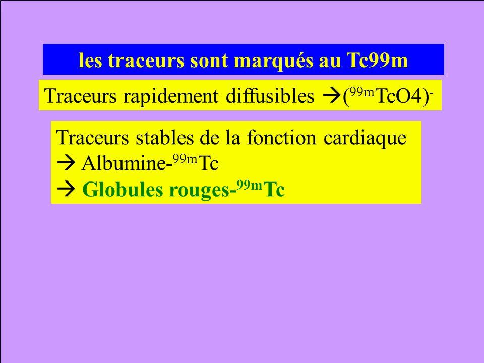 les traceurs sont marqués au Tc99m Traceurs rapidement diffusibles ( 99m TcO4) - Traceurs stables de la fonction cardiaque Albumine- 99m Tc Globules r
