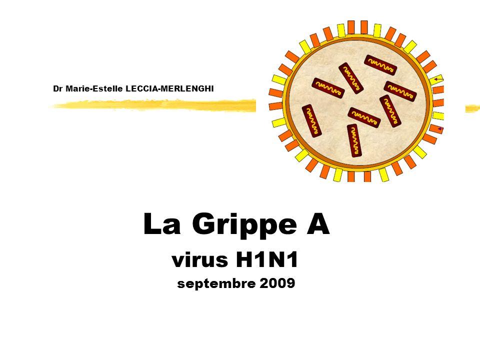 Dr Marie-Estelle LECCIA-MERLENGHI La Grippe A virus H1N1 septembre 2009