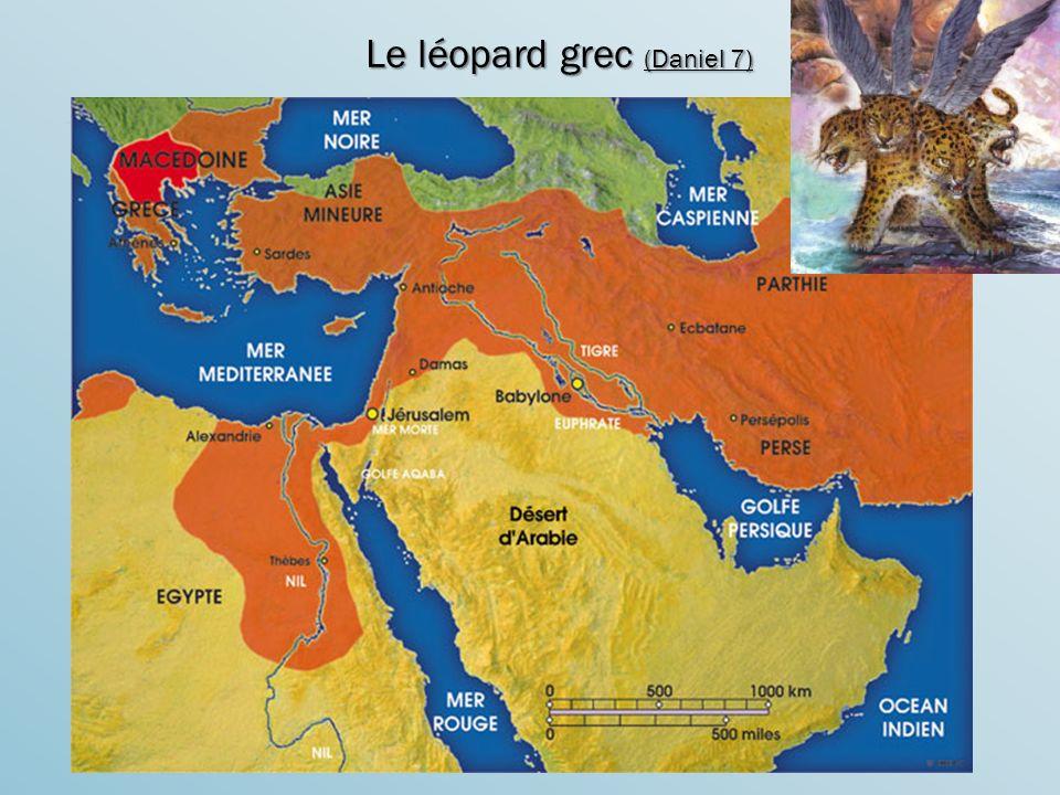 Le léopard grec (Daniel 7)
