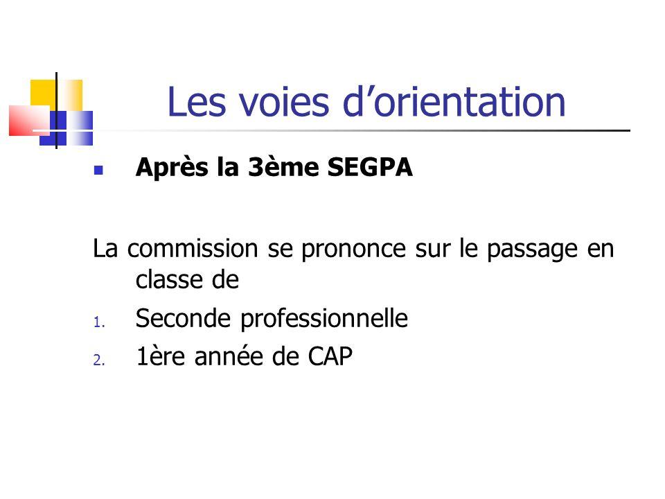 Les voies dorientation Après la 3ème SEGPA La commission se prononce sur le passage en classe de 1.
