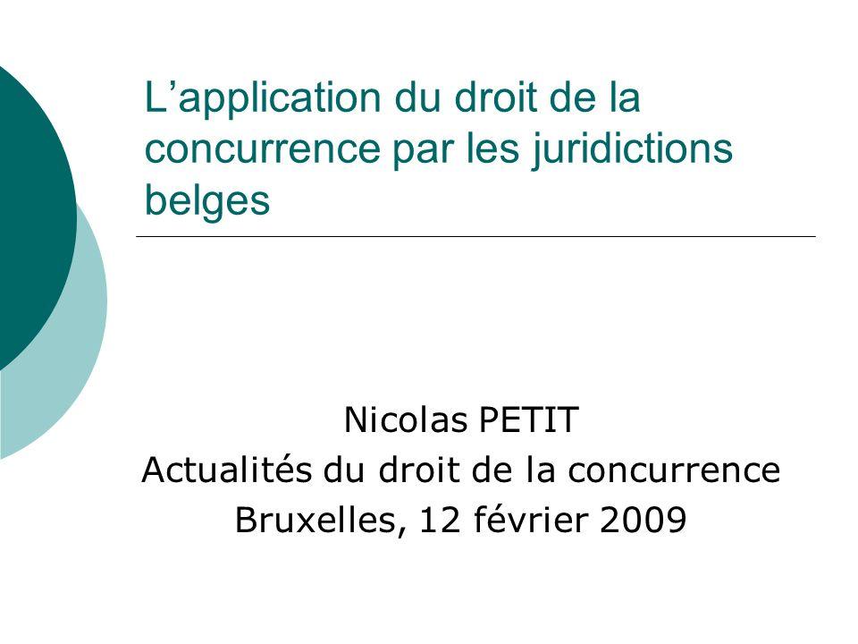 Lapplication du droit de la concurrence par les juridictions belges Nicolas PETIT Actualités du droit de la concurrence Bruxelles, 12 février 2009