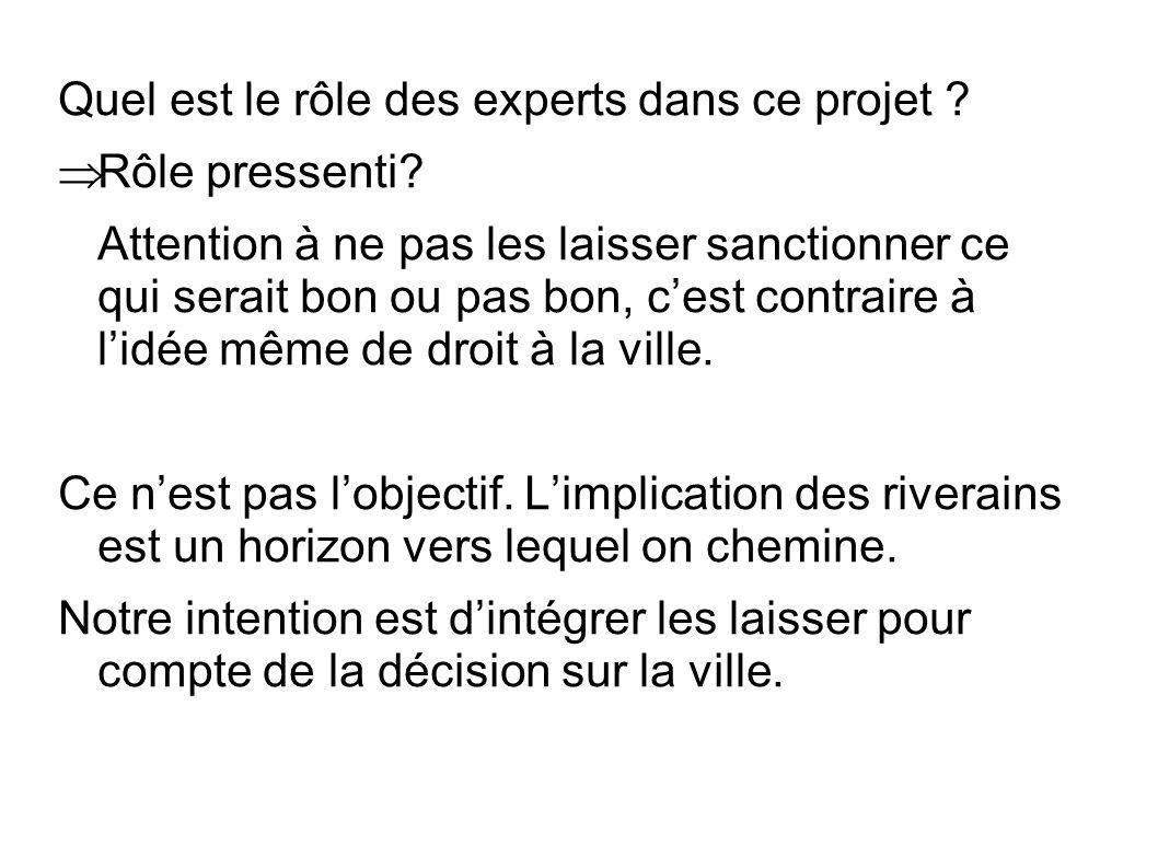 Quel est le rôle des experts dans ce projet . Rôle pressenti.