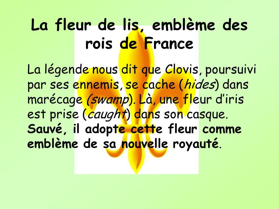 La fleur de lis, emblème des rois de France La légende nous dit que Clovis, poursuivi par ses ennemis, se cache (hides) dans marécage (swamp). Là, une
