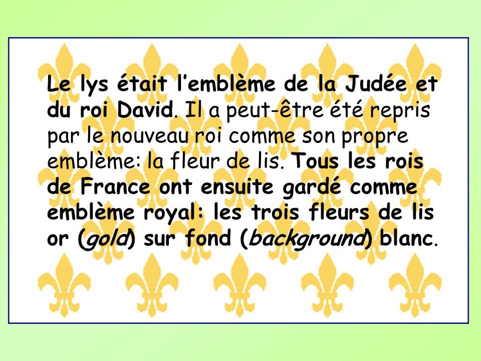 Le lys était lemblème de la Judée et du roi David. Il a peut-être été repris par le nouveau roi comme son propre emblème: la fleur de lis. Tous les ro