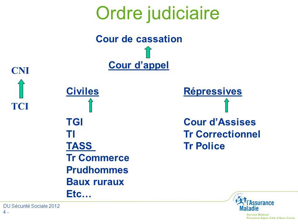 DU Sécurité Sociale 2012 4 - Ordre judiciaire Cour de cassation Cour dappel CivilesRépressives TGI Cour dAssises TITr Correctionnel TASSTr Police Tr C