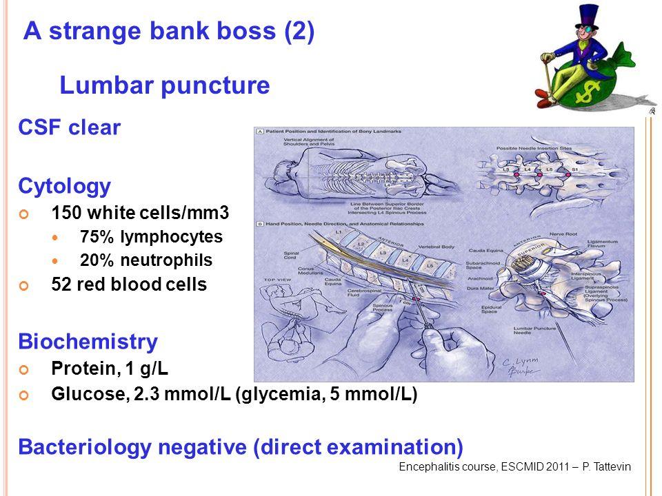 Encephalitis course, ESCMID 2011 – P. Tattevin A strange bank boss (2) Lumbar puncture CSF clear Cytology 150 white cells/mm3 75% lymphocytes 20% neut