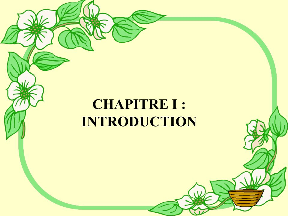 Sommaire Chap I : ………………………………………………………....Introduction Chap II : ………………………………………………………..