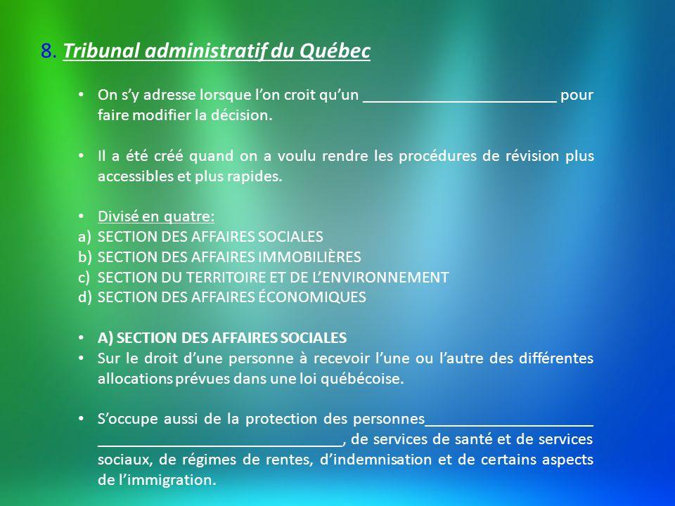 B) SECTION DES AFFAIRES IMMOBILIÈRES Soccupe surtout des questions reliées ___________________________ _______________________________(taxes municipales) C) SECTION DU TERRITOIRE ET DE LENVIRONNEMENT En matière de protection de l environnement, les décisions administratives peuvent être contestées devant cette division.