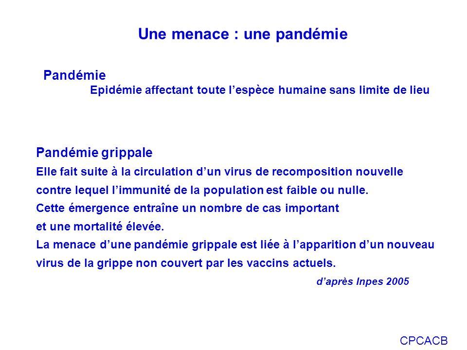CPCACB Pandémie grippale Elle fait suite à la circulation dun virus de recomposition nouvelle contre lequel limmunité de la population est faible ou nulle.
