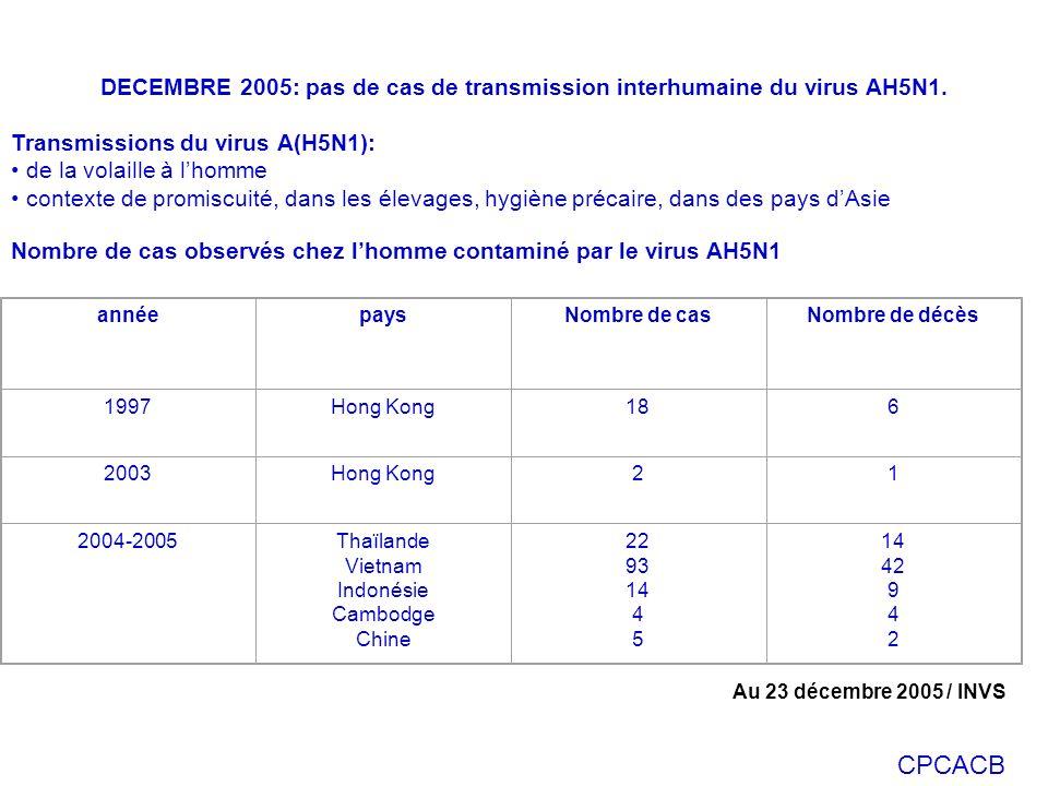 CPCACB DECEMBRE 2005: pas de cas de transmission interhumaine du virus AH5N1. Transmissions du virus A(H5N1): de la volaille à lhomme contexte de prom