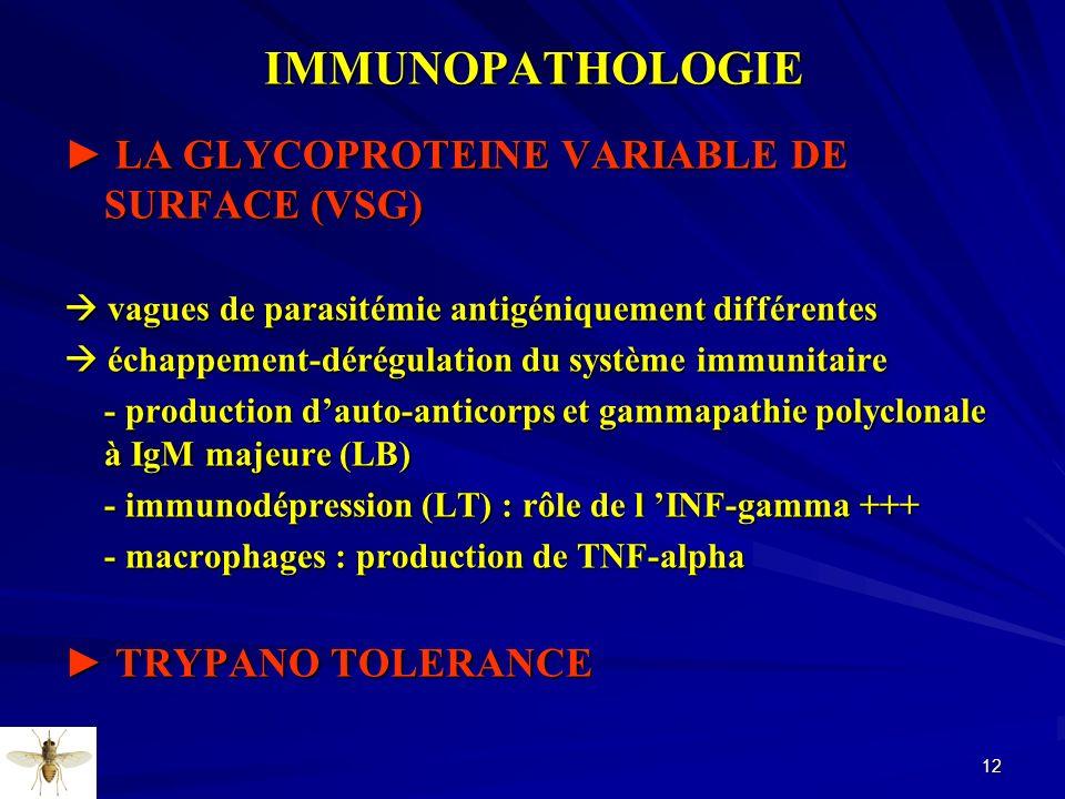 12IMMUNOPATHOLOGIE LA GLYCOPROTEINE VARIABLE DE SURFACE (VSG) LA GLYCOPROTEINE VARIABLE DE SURFACE (VSG) vagues de parasitémie antigéniquement différe