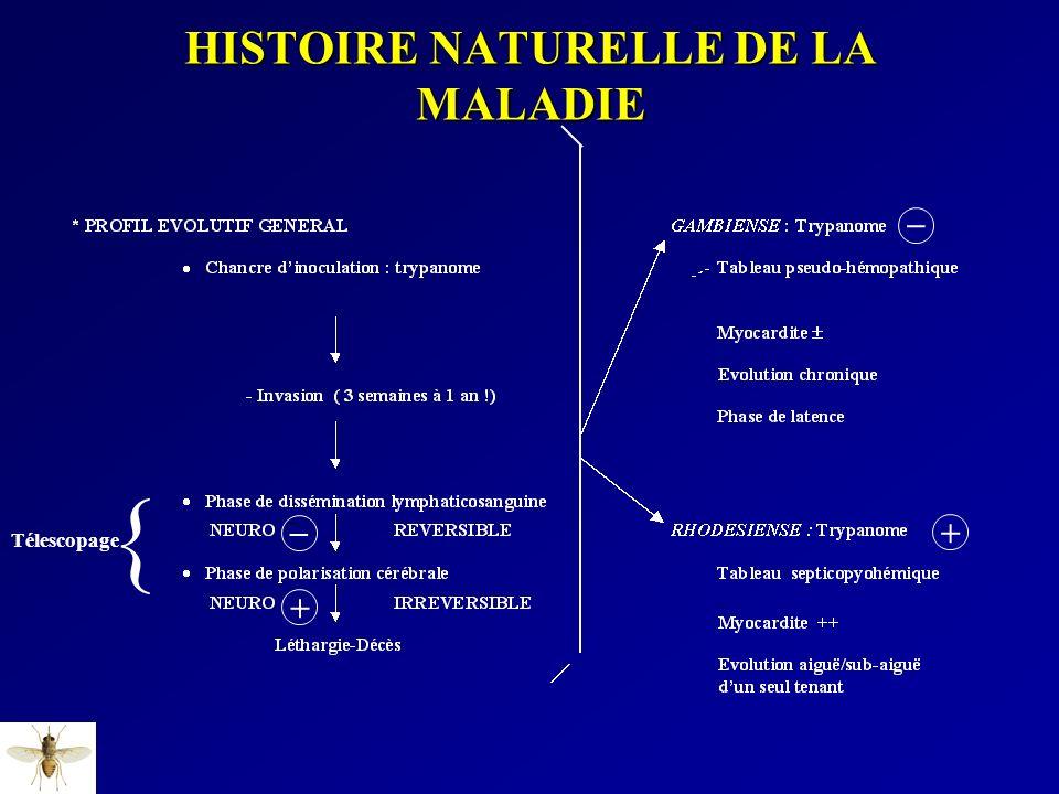 _ _ + + Télescopage { HISTOIRE NATURELLE DE LA MALADIE