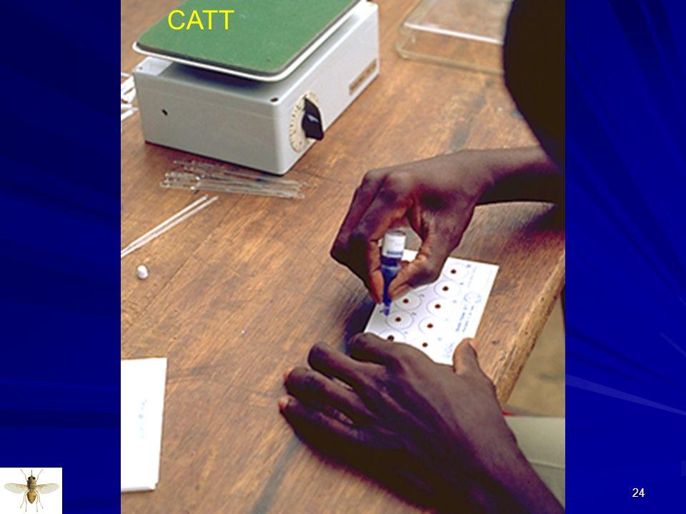 24 CATT