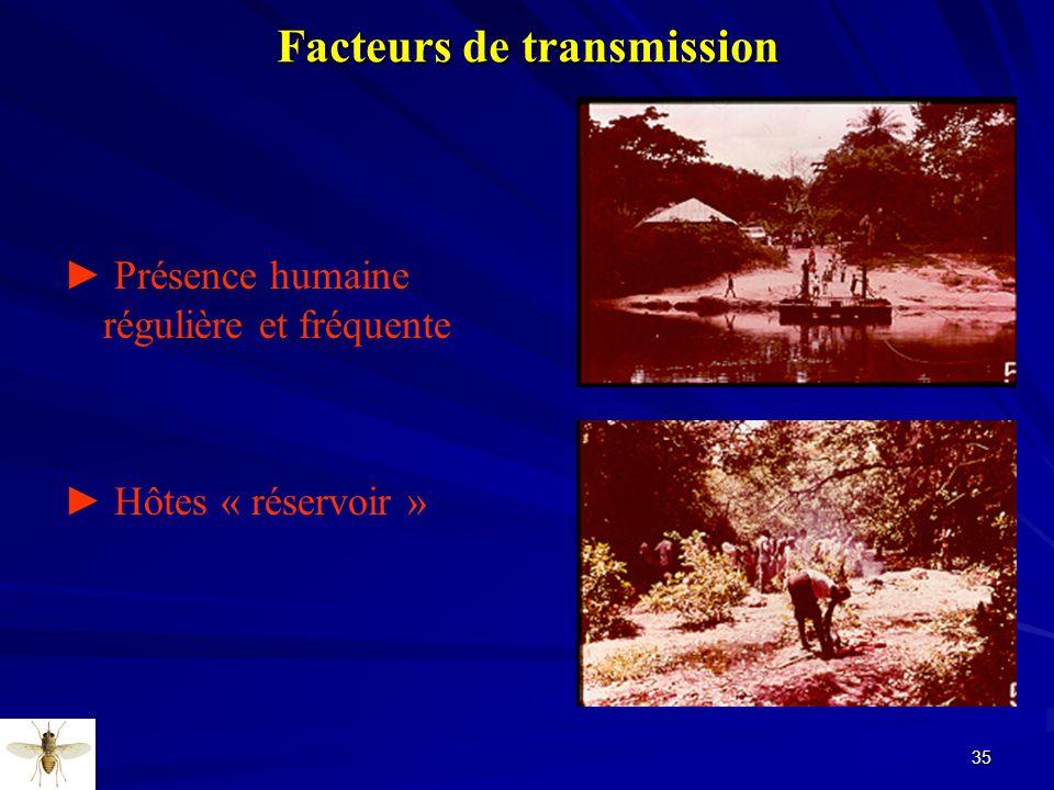 35 Facteurs de transmission Présence humaine régulière et fréquente Hôtes « réservoir »