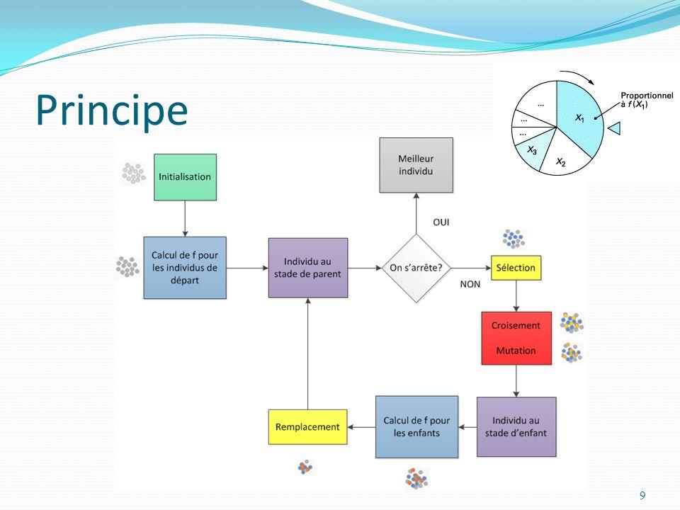 10 Principe Différentes représentations : Discrète Algorithmes génétiques ContinueStratégies d évolution FonctionnelleProgrammations génétique et évolutionnaire