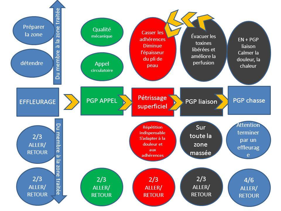 EFFLEURAGE 2/3 ALLER/ RETOUR 2/3 ALLER/ RETOUR Du membre à la zone traitée détendre Qualité mécanique Du membre à la zone traitée PGP APPEL 2/3 ALLER/