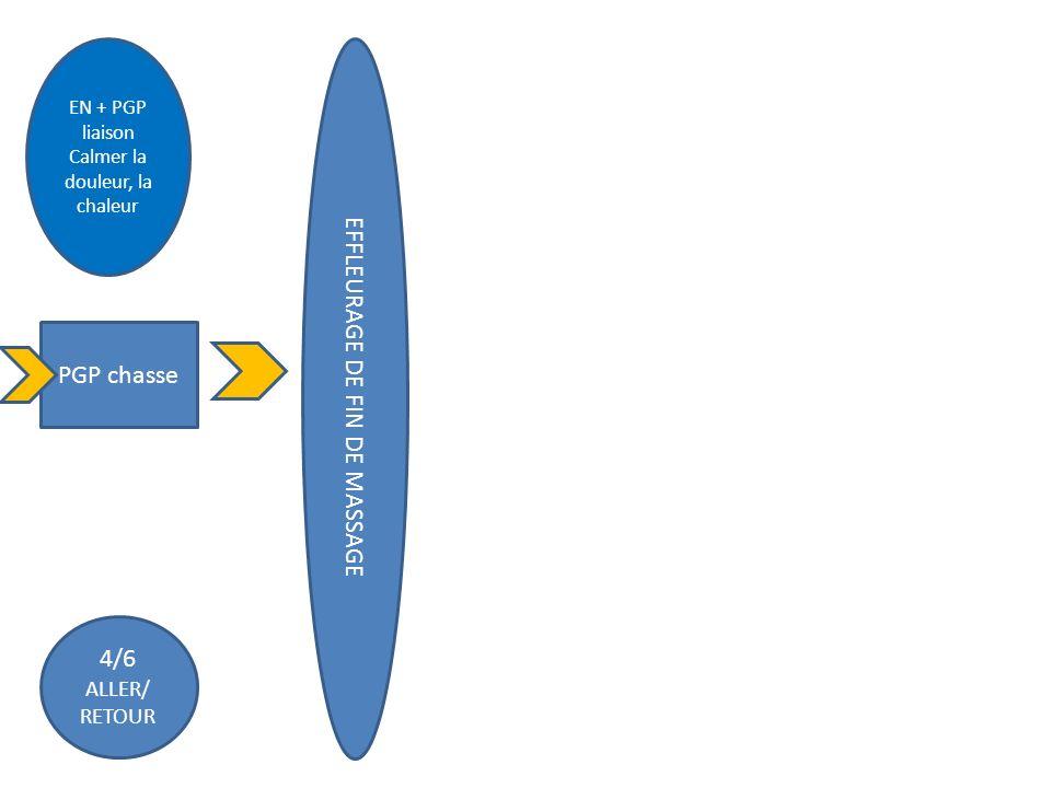 PGP chasse 4/6 ALLER/ RETOUR EN + PGP liaison Calmer la douleur, la chaleur EFFLEURAGE DE FIN DE MASSAGE