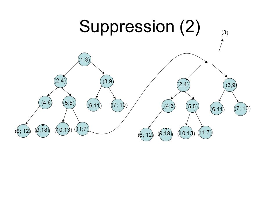 Suppression (2) (1;3) (3,9) (2;4) (4;6) (5;5) (6;11) (7; 10) (8; 12) (9;18)(10;13) (11;7) (3) (3,9) (2;4) (4;6) (5;5) (6;11) (7; 10) (8; 12) (9;18)(10;13) (11;7)