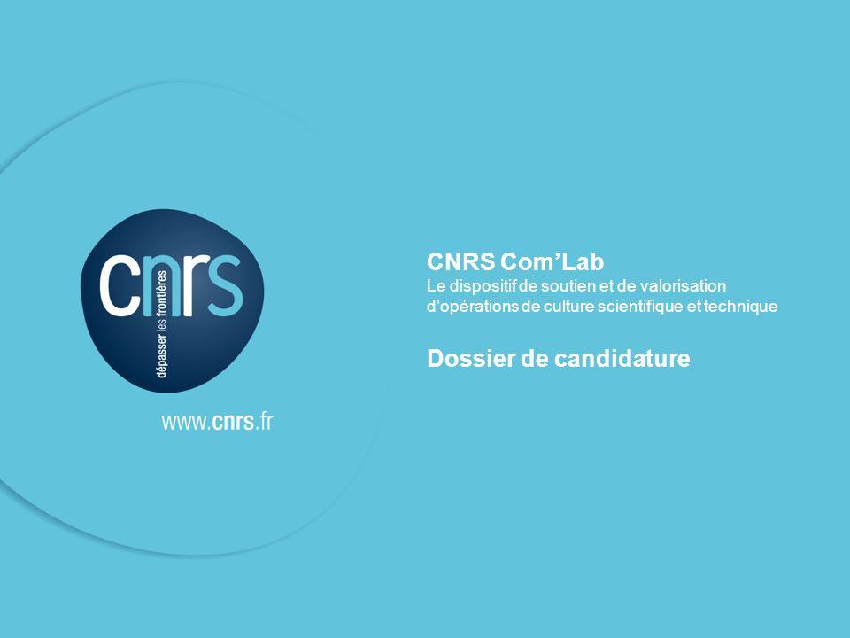 CNRS ComLab Le dispositif de soutien et de valorisation dopérations de culture scientifique et technique Dossier de candidature