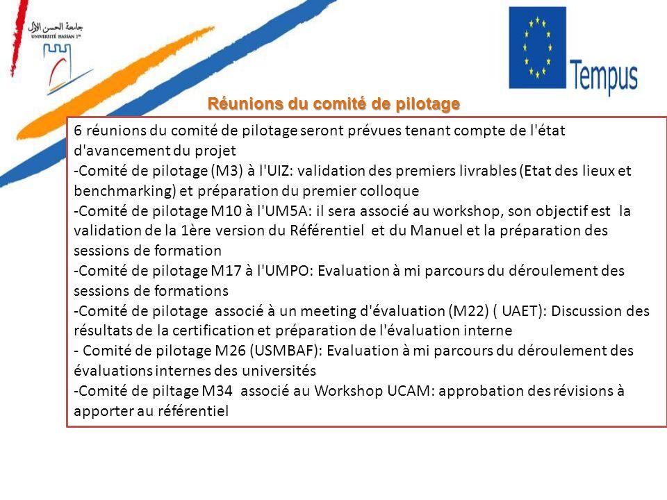Réunions du comité de pilotage 6 réunions du comité de pilotage seront prévues tenant compte de l'état d'avancement du projet -Comité de pilotage (M3)