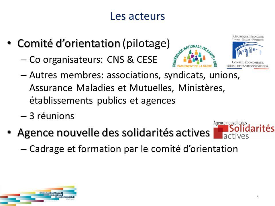 Les acteurs Comité dorientation Comité dorientation (pilotage) – Co organisateurs: CNS & CESE – Autres membres: associations, syndicats, unions, Assur