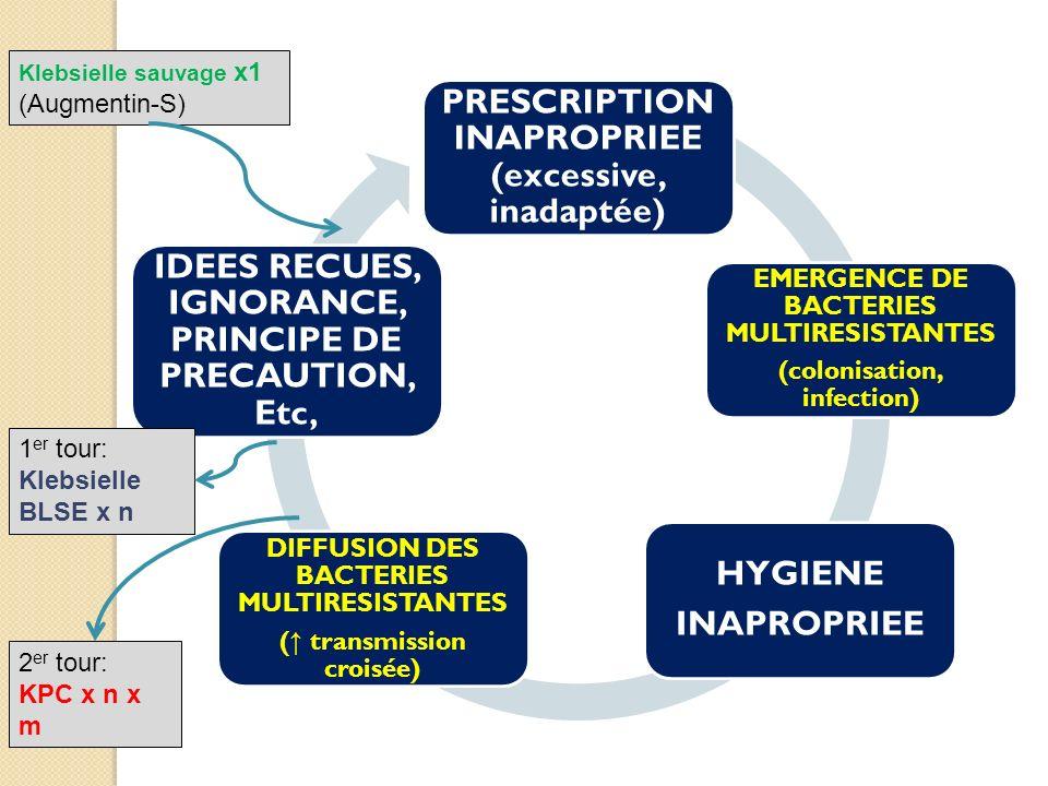 PRESCRIPTION INAPROPRIEE (excessive, inadaptée) EMERGENCE DE BACTERIES MULTIRESISTANTES (colonisation, infection) HYGIENE INAPROPRIEE DIFFUSION DES BACTERIES MULTIRESISTANTES ( transmission croisée) IDEES RECUES, IGNORANCE, PRINCIPE DE PRECAUTION, Etc, BUT FINAL DU COURS