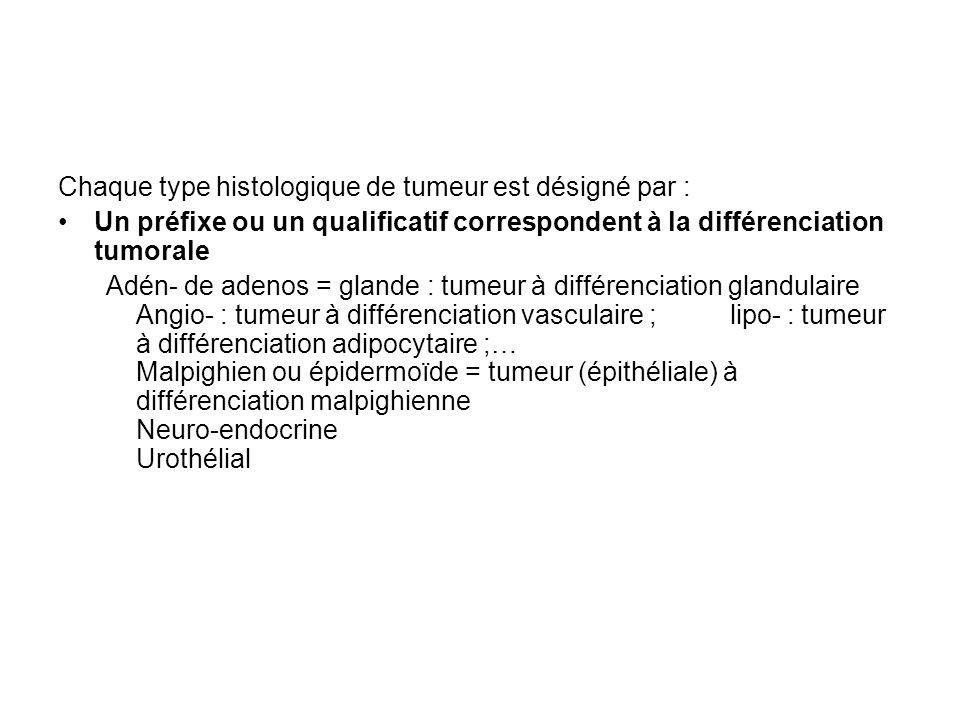 Chaque type histologique de tumeur est désigné par : Un préfixe ou un qualificatif correspondent à la différenciation tumorale Adén- de adenos = glande : tumeur à différenciation glandulaire Angio- : tumeur à différenciation vasculaire ; lipo- : tumeur à différenciation adipocytaire ;… Malpighien ou épidermoïde = tumeur (épithéliale) à différenciation malpighienne Neuro-endocrine Urothélial