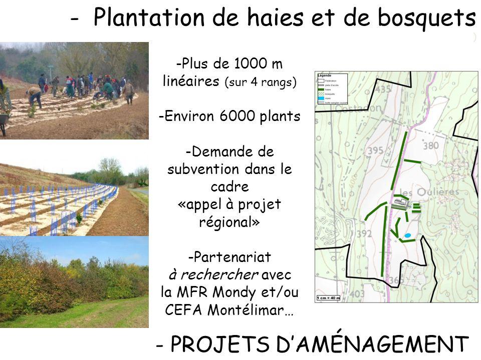 -Plantation de haies et de bosquets ) - PROJETS DAMÉNAGEMENT -Plus de 1000 m linéaires (sur 4 rangs) -Environ 6000 plants -Demande de subvention dans