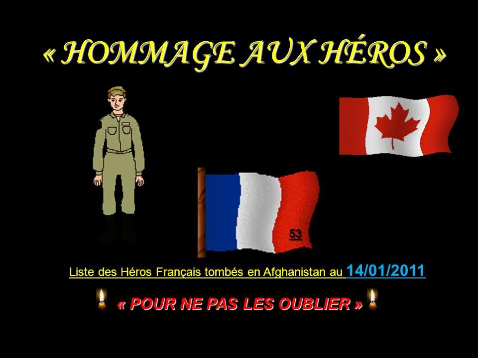 Caporal LE PAHUN 8 e RPIMA - 20 ans (combat dcd 18-08-2008).