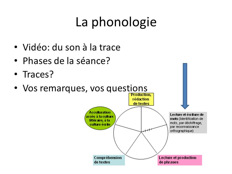 La phonologie Vidéo: du son à la trace Phases de la séance? Traces? Vos remarques, vos questions