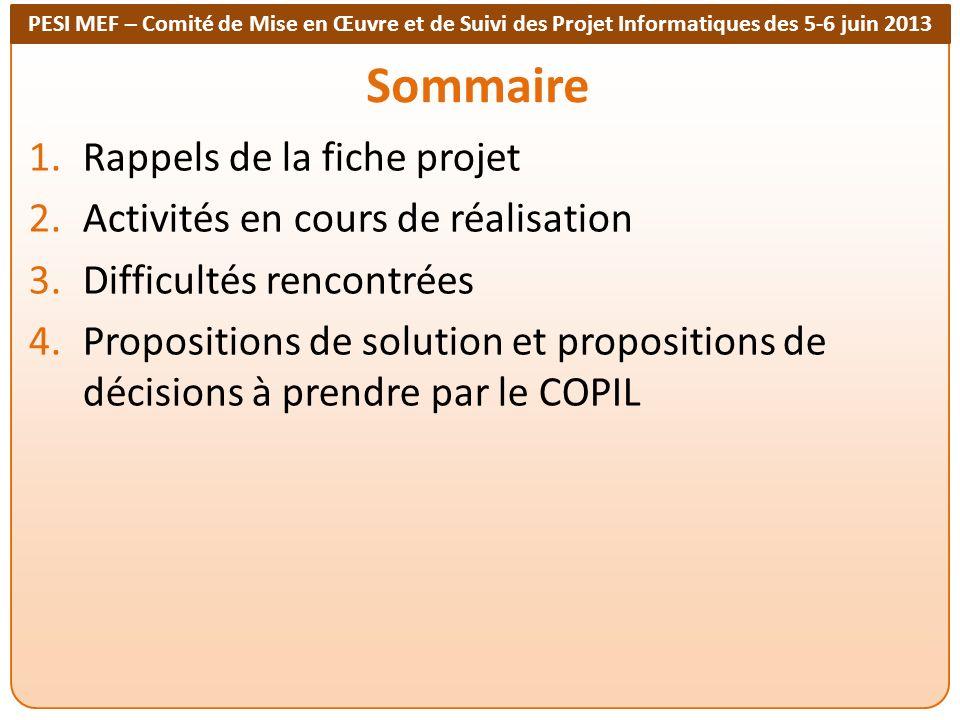 PESI MEF – Comité de Mise en Œuvre et de Suivi des Projet Informatiques des 5-6 juin 2013 Sommaire 1.Rappels de la fiche projet 2.Activités en cours d