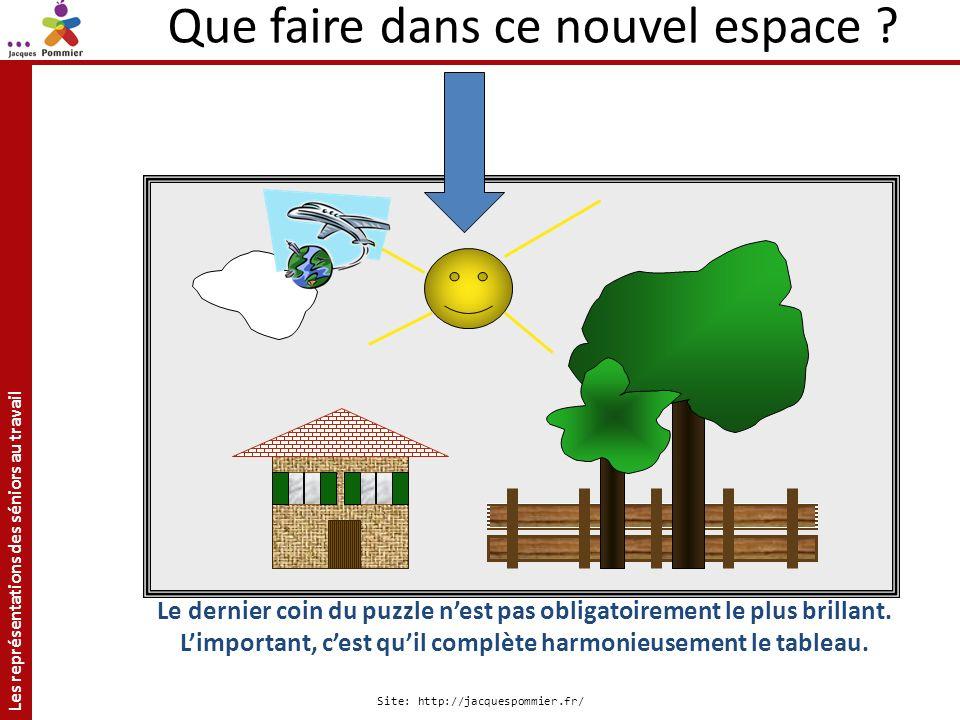 Les représentations des séniors au travail Site: http://jacquespommier.fr/ Le dernier coin du puzzle nest pas obligatoirement le plus brillant. Limpor