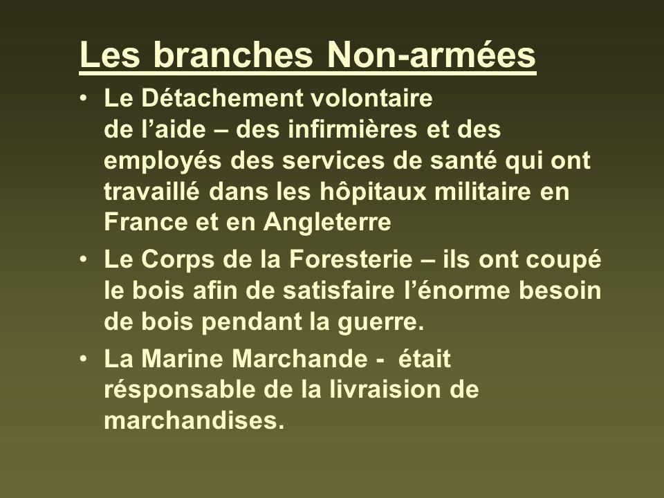 Les branches Non-armées Le Détachement volontaire de laide – des infirmières et des employés des services de santé qui ont travaillé dans les hôpitaux