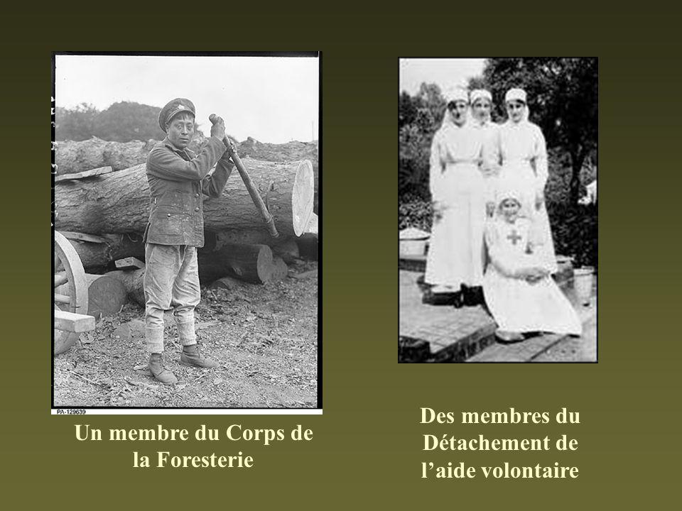 Des membres du Détachement de laide volontaire Un membre du Corps de la Foresterie