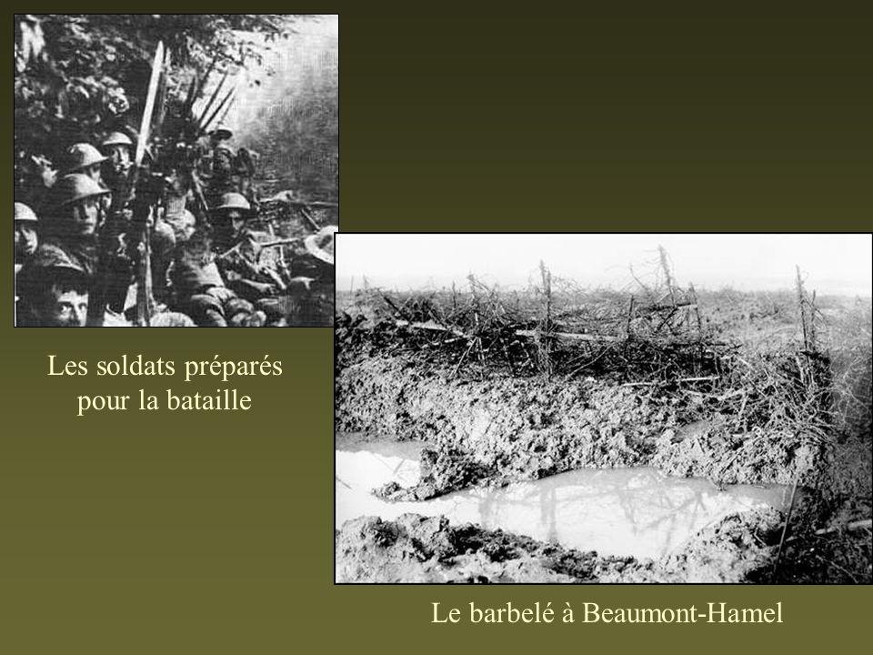 Les soldats préparés pour la bataille Le barbelé à Beaumont-Hamel