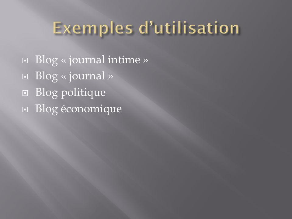 Blog « journal intime » Blog « journal » Blog politique Blog économique