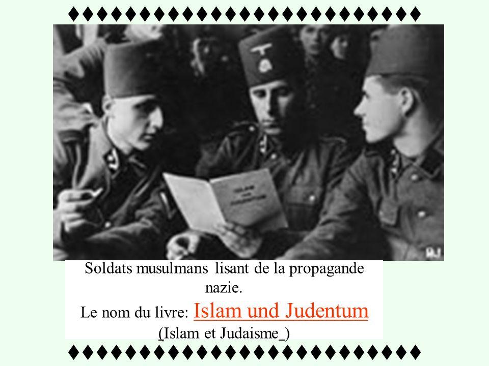 Insigne des musulmans Bosniaques nazis sous Amin Al Husseini - 1943 - Affiche de propagande nazie présentant Amin Al Husseini passant en revue de jeun
