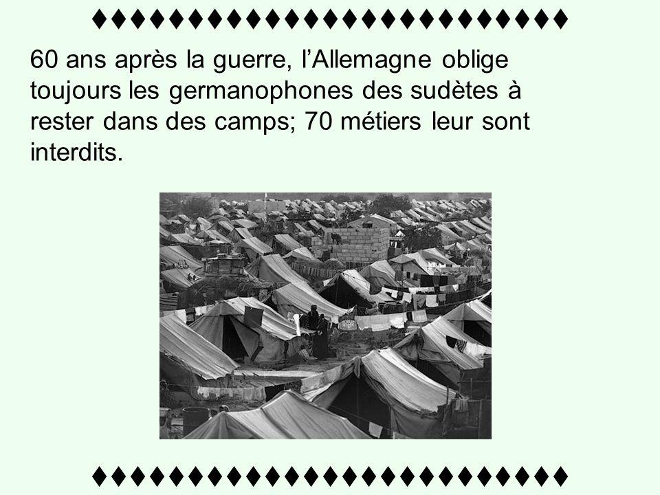 ttttttttttttttttttttttttt 60 ans après la guerre, lAllemagne oblige toujours les germanophones des sudètes à rester dans des camps; 70 métiers leur sont interdits.