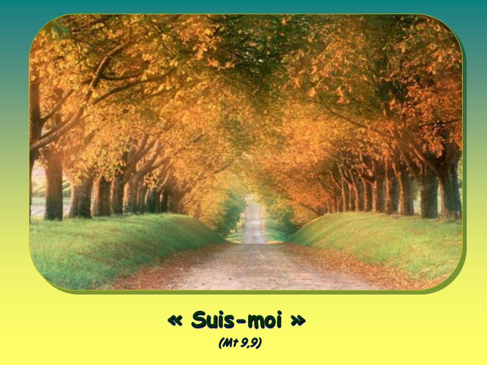« Suis-moi » (Mt 9,9)