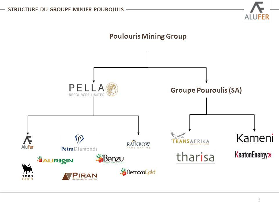 STRUCTURE DU GROUPE MINIER POUROULIS 3 Poulouris Mining Group Groupe Pouroulis (SA)