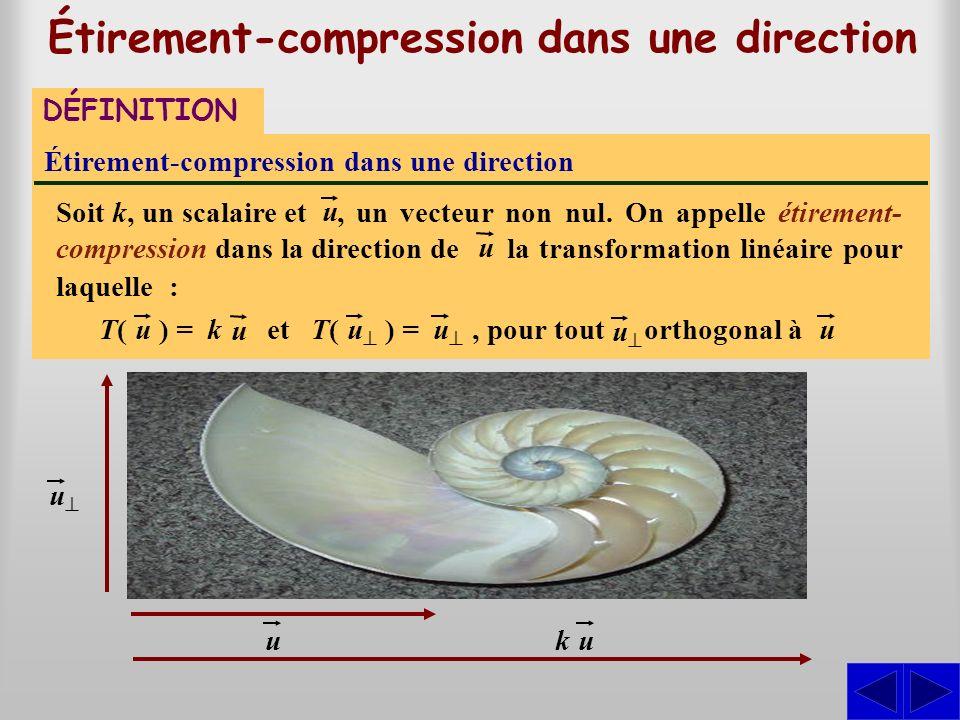 , un vecteur non nul. On appelle étirement- compression dans la direction de Étirement-compression dans une direction Étirement-compression dans une d