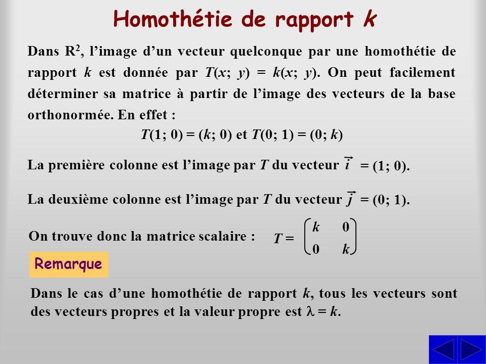 Dans R 2, limage dun vecteur quelconque par une homothétie de rapport k est donnée par T(x; y) = k(x; y). On peut facilement déterminer sa matrice à p